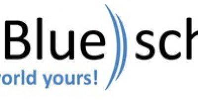 Axis Blueschild International Market Development Services