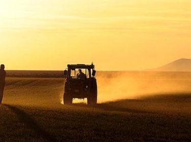 """""""Tarımda 16 milyar lira dağıtılıp, ithalat artıyorsa teşviklerin etkinliği sorgulanmalı"""""""